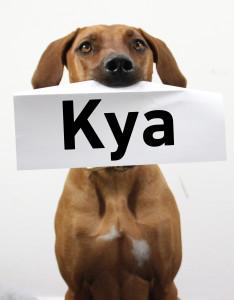 Kya_farbe
